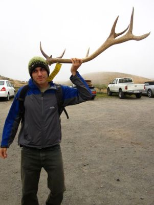 Point Reyes Elk Antler