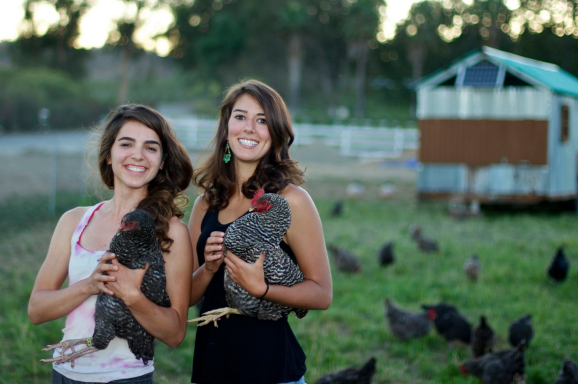 WWOOFers Tina and Dawn work with (and adore) the chickens