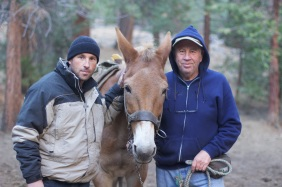 Father and son horsepacking in Sequoia Nat'l Park pose with a mule.