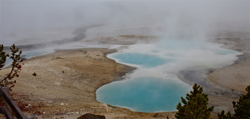 Porcelain Basin in Yellowstone National Park.